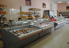 Холодильная витрина ВХС-2,0 Carboma, фото 3