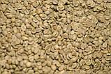 """Опт Зеленый Кофе Арабика """"Сантос"""" Бразилия. Зеленый Кофе Оптом - от 60 кг. xcoffee, фото 3"""