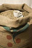 """Опт Зеленый Кофе Арабика """"Сантос"""" Бразилия. Зеленый Кофе Оптом - от 60 кг. xcoffee, фото 2"""