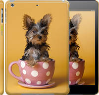 "Чехол на iPad 5 (Air) Йоркширский терьер в чашке ""927c-26"""