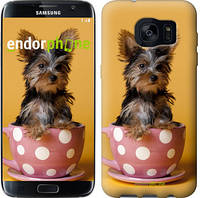 """Чехол на Samsung Galaxy S7 Edge G935F Йоркширский терьер в чашке """"927c-257"""""""