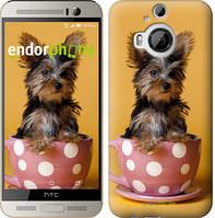 "Чехол на HTC One M9 Plus Йоркширский терьер в чашке ""927u-134"""