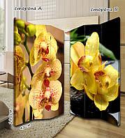 Ширма. перегородка Нежные желтые цветы 185 см