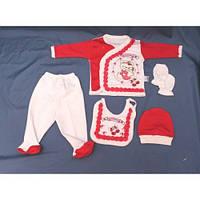 Набор для новорожденного 5 в 1 «Мишка» малиновый