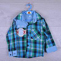 """Рубашка детская """"N6X"""". для мальчика. 1-4 года. Голубая. Оптом."""