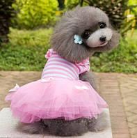 """Платье для собаки, кошки  """"Тельняшка с бантиками"""". Одежда для животных"""