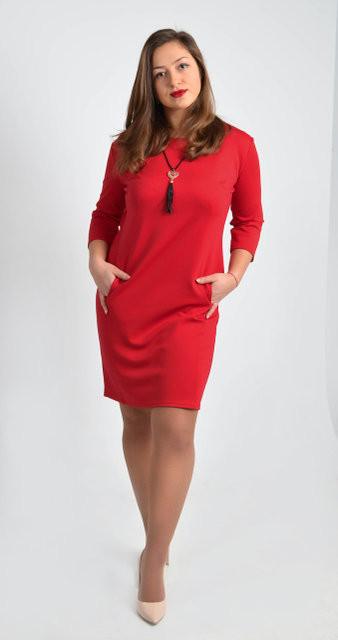 Привлекательное платье большого размера размеры 44,46,54