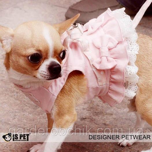 """Платье - поводок """"Розовый бант"""" Is Pet для собаки. Шлея - поводок. Одежда для собак, кошек"""