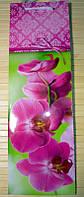 Пакет подарочный под бутылку (12х36х10) Орхидея