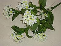 Букет мелкоцвета белого, фото 1