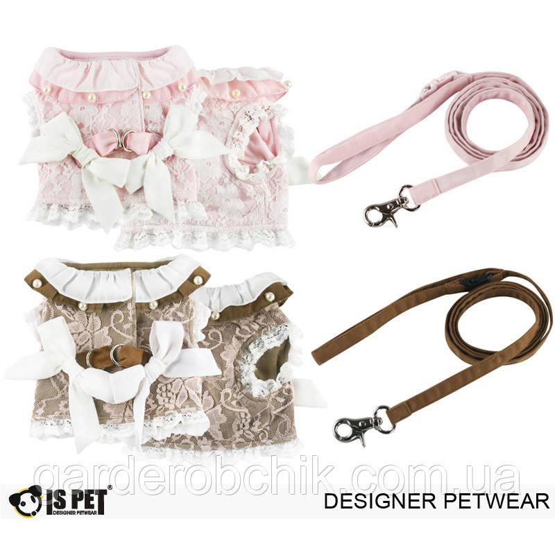 """Платье-поводок """"Восточные кружева"""" Is Pet для собаки. Мягкая шлейка. Одежда для собак, кошек"""