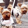 """Платье-поводок """"Восточные кружева"""" Is Pet для собаки. Мягкая шлейка. Одежда для собак, кошек, фото 3"""