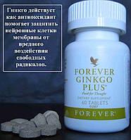 Гинкго, Рейши, Фоти и Шизандра, Форевер Гинкго Плюс, США, Forever Ginkgo Plus, 60 таблеток