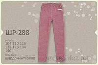 Термобрюки для девочки Bembi ШР288 розовые 116