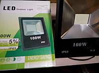Прожектор светодиодный LedMARK ES-100  100W
