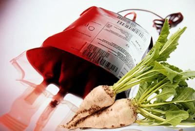 Сахарная свекла может стать заменителем крови
