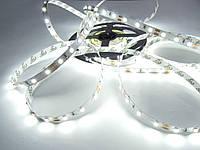 Світлодіодна стрічка SMD 3528-60 преміум серія 5-6Лм Білий