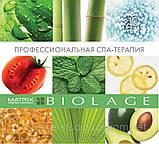 Matrix Biolage Кондиционер для придания волосам объема Volumebloom,200 мл, фото 3