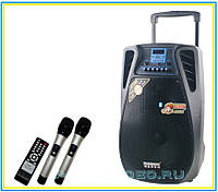 Колонка на аккумуляторе 12-02 (2 микрофона, Bluetoth)