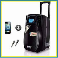 Аккумуляторная акустика SL10-02 с микрофонами Bluetooth