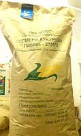 Гибрид кукурузы Любава 279 МВ 2Ф 25 кг