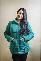 Короткая женская куртка с капюшоном