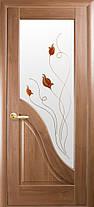 Межкомнатные двери Амата со стеклом, фото 2
