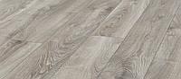 Ламинат Kronotex Mammut (Кронотекс Мамут) V4 Дуб горный серебристый 1х D4797 33й класс