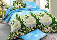 Двуспальный комплект постельного белья евро 200*220 хлопок  (6905) TM KRISPOL Украина
