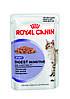 Royal Canin Digest Sensitive в соусе - влажный корм для кошек от 1 года с чувствительным пищеварением 0,085 кг
