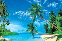 """Фотообои """"Гавайские острова 196х350 (20Л)"""" Ника"""