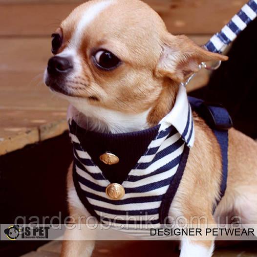 """Мягкая шлейка - поводок """"Морская"""" Is Pet. Одежда для собак, кошек"""