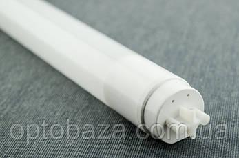 LED лампа-трубка T8 60 см 9 Вт 6500К пластик, фото 3