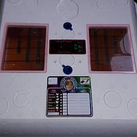 Инкубатор Рябушка 70 яиц Смарт плюс цифровой с механическим переворотом яиц плёночный нагрев