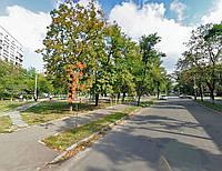 Безлимитный Интернет ул. Новодарницкая 100 Мбит/сек Киев Дарницкий район, фото 1