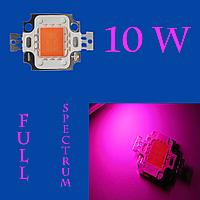 Светодиодная матрица 10 Вт (Full spectrum)
