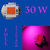 Светодиодная матрица 30 Вт (Full spectrum)