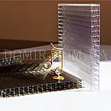 Полікарбонат Titan Sky (Титан Скай) Polygal, фото 2