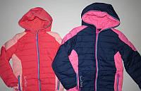 Куртки на флисе для девочек р-ры 134, 140, 146,  152,  Венгрия, GRACE G60567