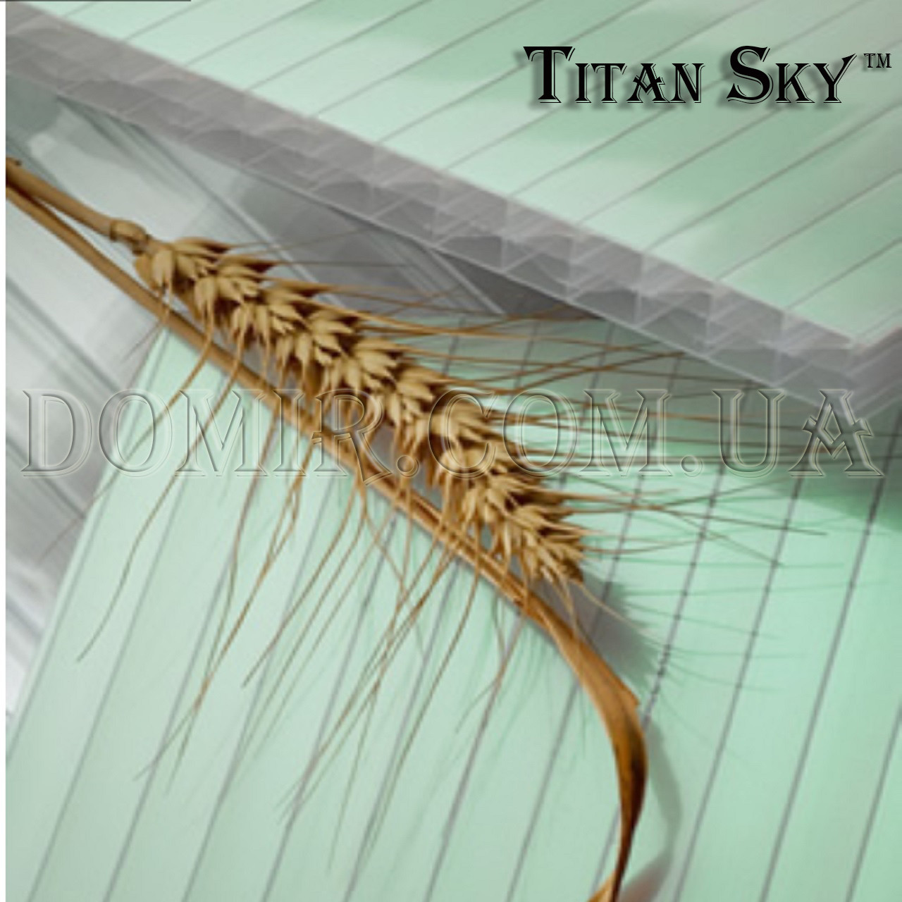 Поликарбонат Titan Sky (Титан Скай) Polygal
