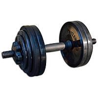 Гантель InterAtletika разборная черная 13,82 кг (СТ 530.15)