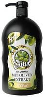 Шампунь для волос Gallus Shampoo Oliven Extrakt 1л