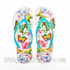 Женские вьетнамки оптом Gipanis. 36-40рр. Модель DS 42 - 6, фото 3