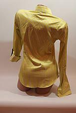 Женские классические рубашки в полоску оптом VSA лимонный, фото 3