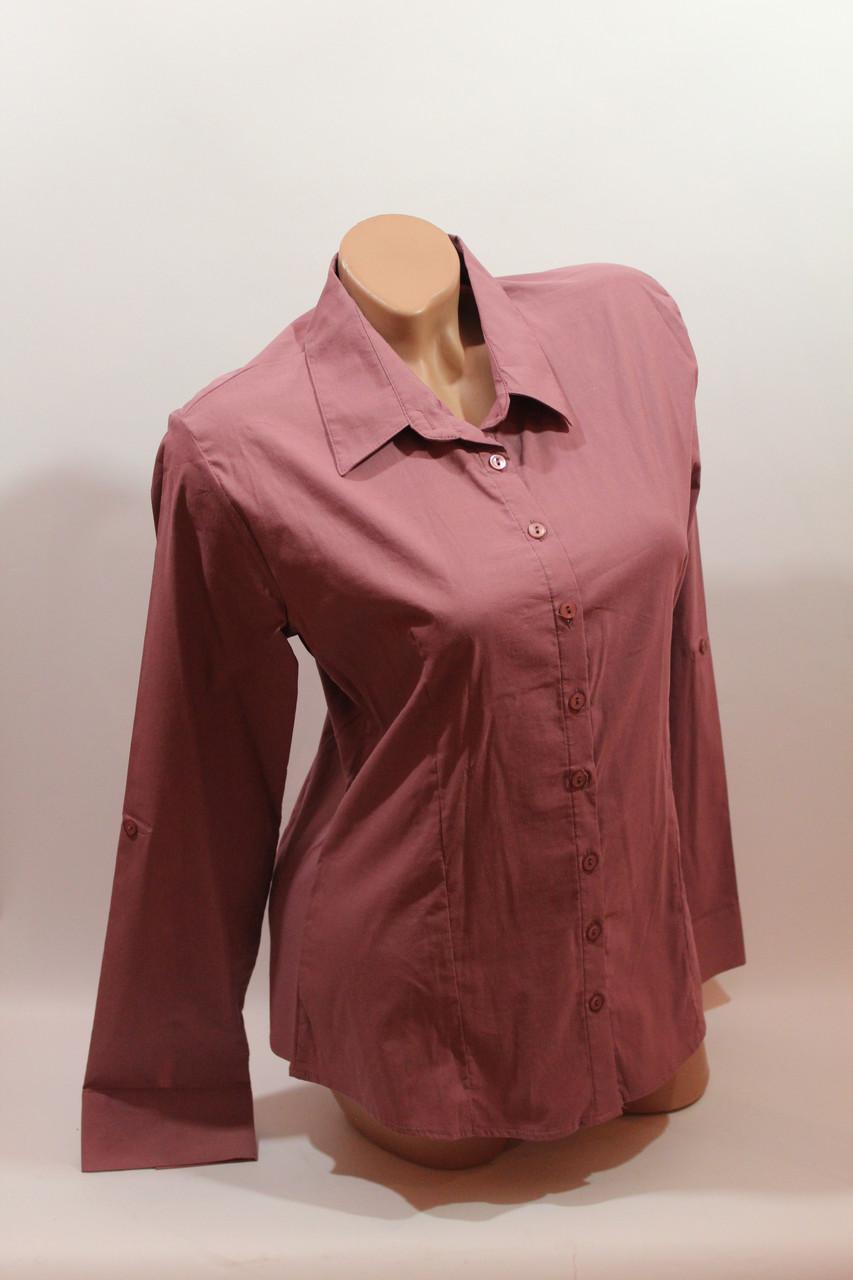 Женские однотонные рубашки (хлопок+ликра) Mod-da odnoton. battal увеличенные размеры