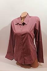 Женские однотонные рубашки (хлопок+ликра) Mod-da odnoton. battal увеличенные размеры, фото 2