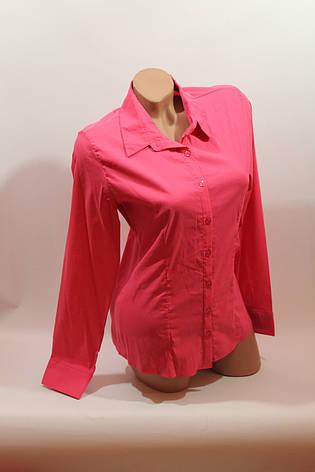 Женские однотонные рубашки (хлопок+ликра) Mod-da odnoton. battal увеличенные размеры малина, фото 2