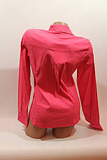 Женские однотонные рубашки (хлопок+ликра) Mod-da odnoton. battal увеличенные размеры малина, фото 3