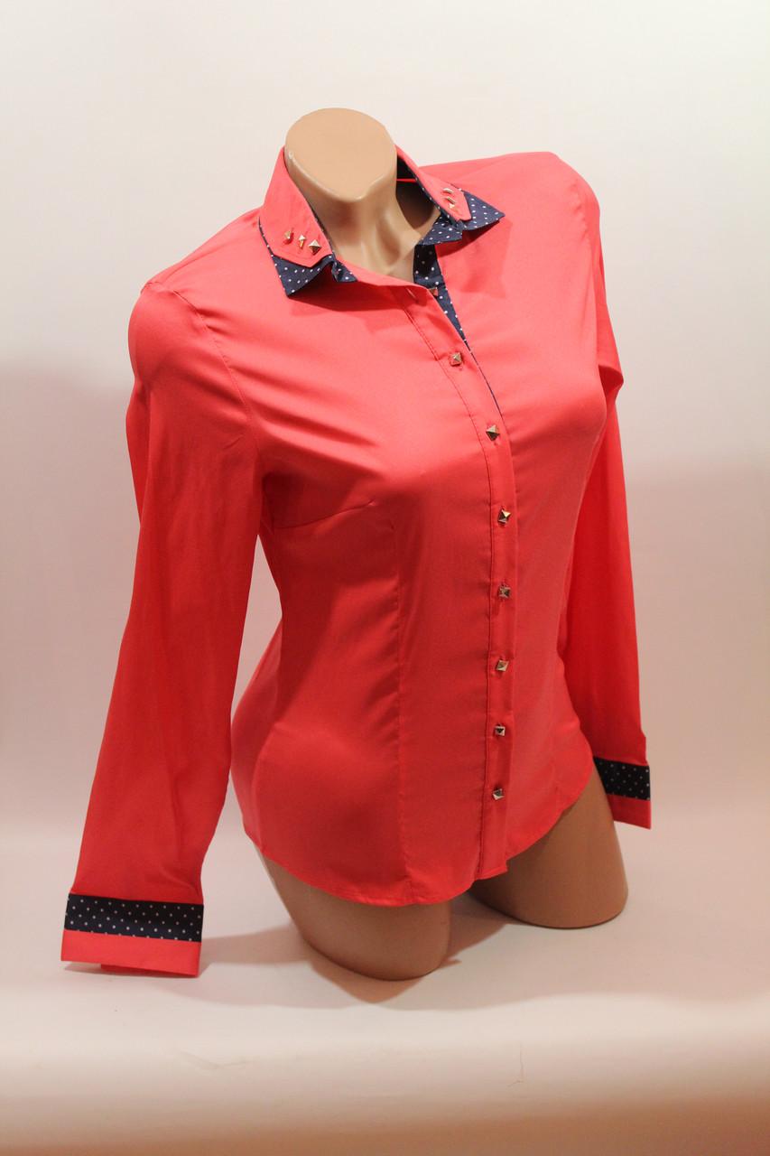 Женские однотонные рубашки (хлопок+ликра) Mod-da+cat-a norma коралл