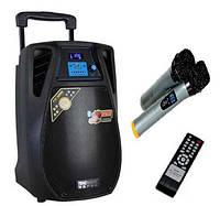 Комбик с микрофонами DP10-02 / 100W(USB/Bluetooth/Аккумулятор)
